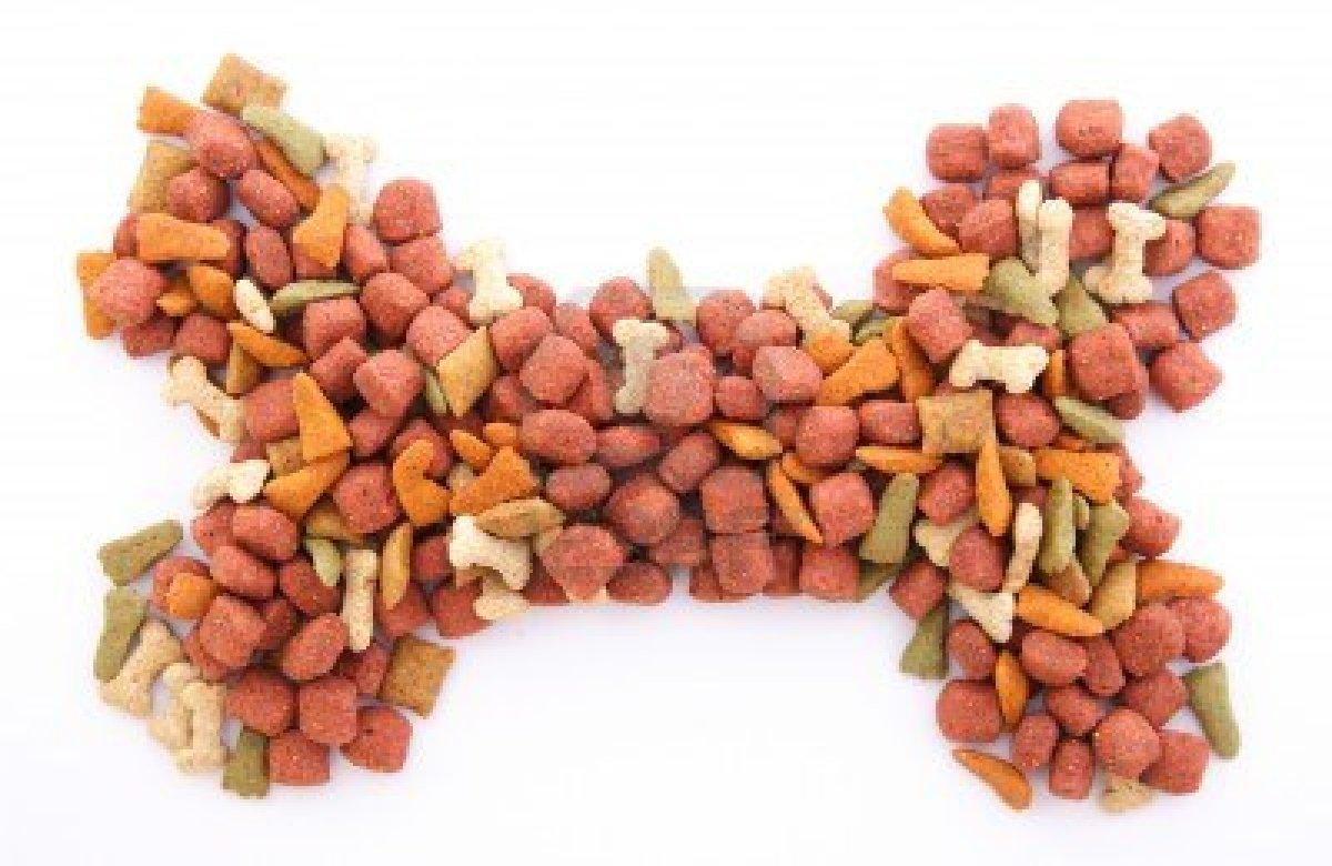 Todos los alimentos para perros no son iguales for Alimento para perros