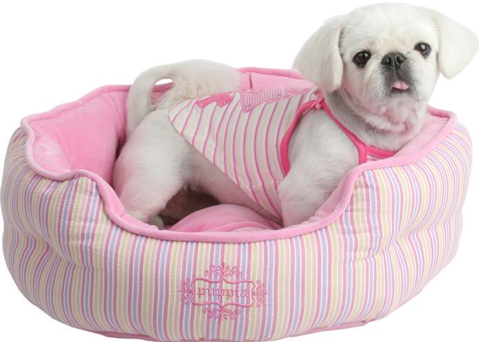 Elecci n de la cama perfecta para tu perro for Cual es la cama mas grande